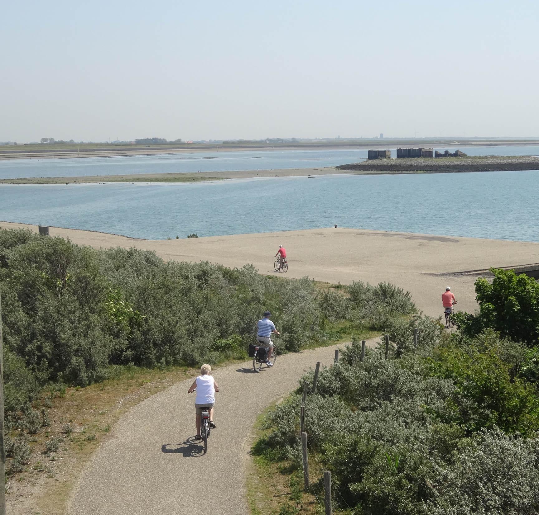 5 Km Van LEO BBB:  De Schelphoek. Natuur Met Historie.